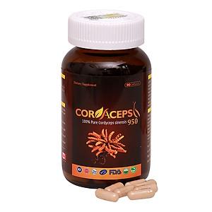 Hình đại diện sản phẩm Thực Phẩm Chức Năng Viên Nang Đông Trùng Hạ Thảo Nguyên Chất Cordaceps 950mg (Hộp 90 viên)