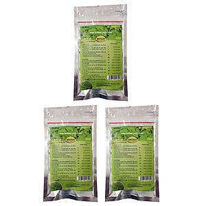 Hình đại diện sản phẩm Combo: 3 Túi dinh dưỡng trồng cây thủy canh sạch BKFast 260g Bio Grow