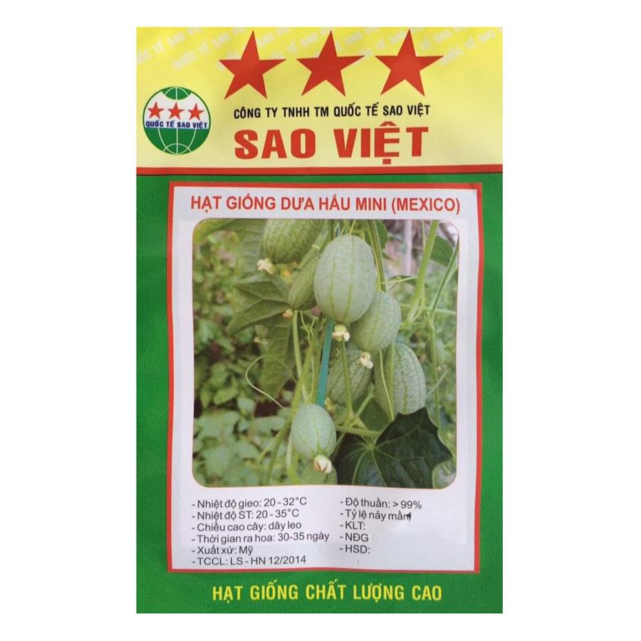 Hạt Giống Dưa Hấu Mini Sao Việt 62D-DUAHAUMINI (5 Hạt / Gói)