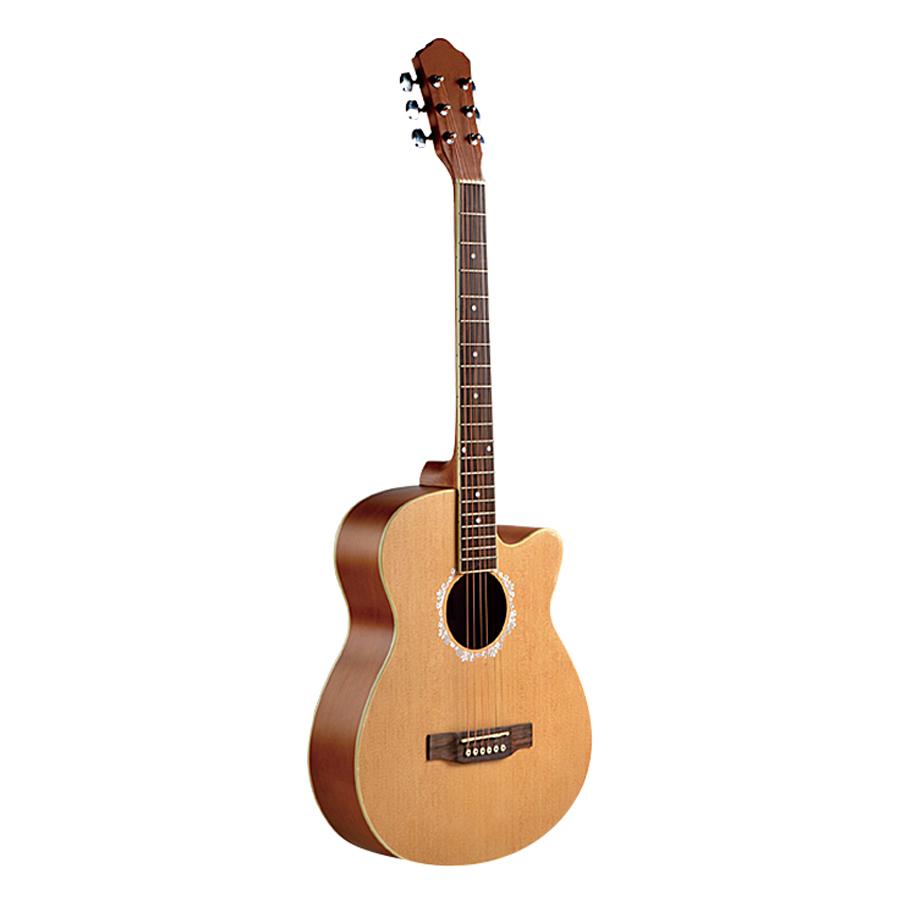 Đàn Guitar Acoustic Vines VA3940N