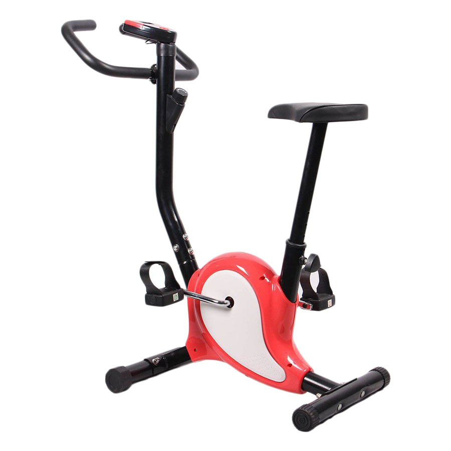 Xe Đạp Tập Thể Dục Tại Nhà BG Exercise Bike-YS01