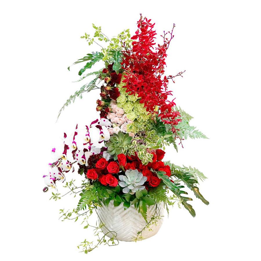 Chậu Hoa Vườn Địa Đàng JDSPECIAL0015
