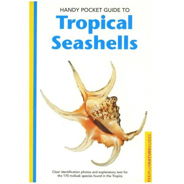 Handy Pocket Guide to Tropical Seashells (Handy Pocket Guides)